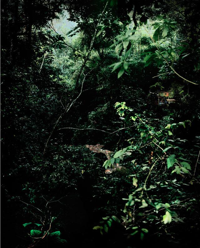 "Caio Reisewitz, ""Paretinga"" (2010) (courtesy Luciana Brito Galeria, São Paulo, © Caio Reisewitz)"