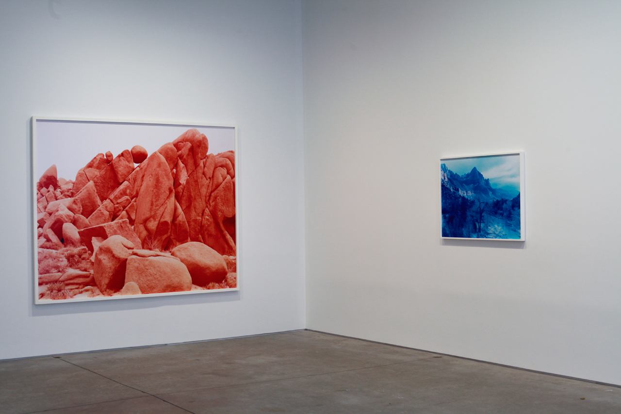 Installation view, David Benjamin Sherry at Danziger Gallery