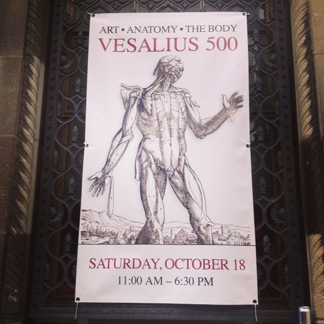 FINAL Vesalius 500 Poster