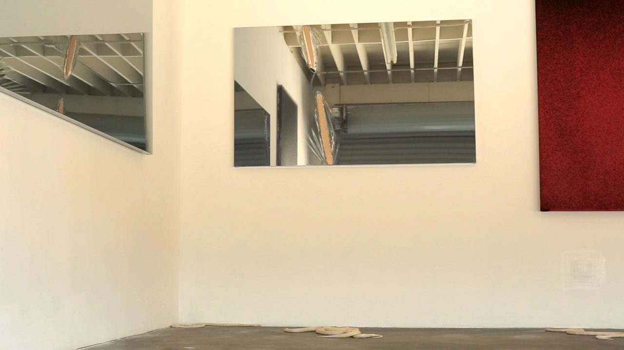 Video still of albino morph California king snakes with installation view of 'John Knuth: Base Alchemy' at 5 Car Garage (video by Andy Featherston)
