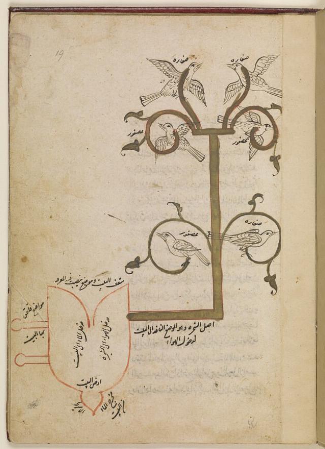 Essays arabic culture