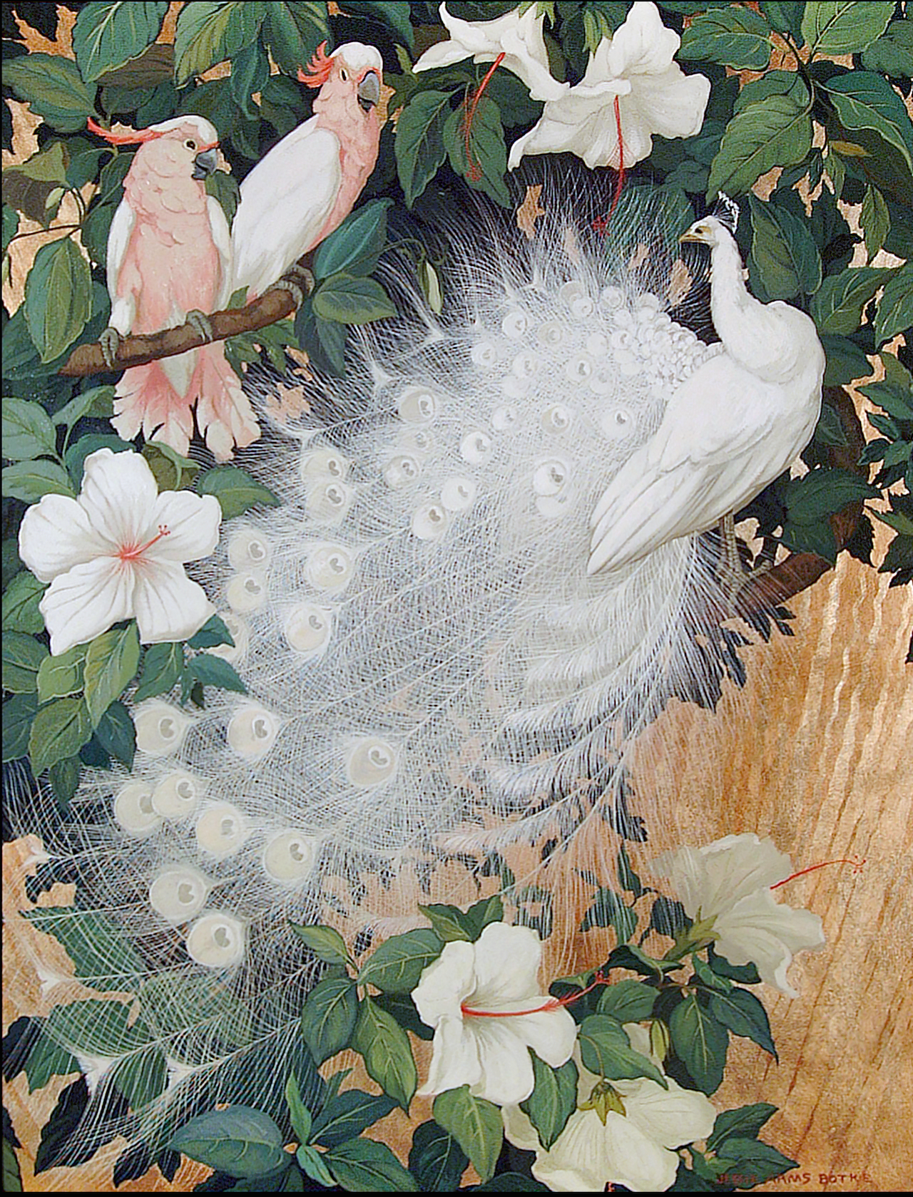 """""""Albino Peacock and Two Cockatoo,"""" (c. 1930) by Jesse Arms Botke (Collection of Deborah E. Maloy)"""