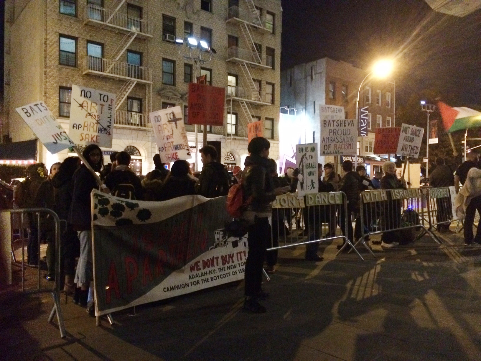 Protesters in from of BAM on November 12, 2014.