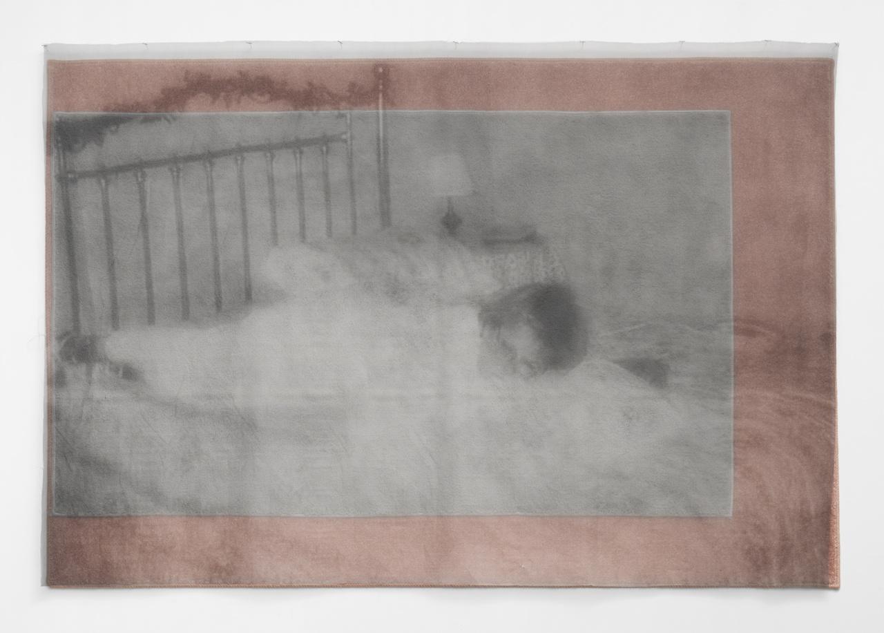 "David Mramor, ""Venus in Bed (Carpet)"" (2014), ink jet print on chiffon, spray paint on carpet remnants, 48 x 69"" (all images courtesy Louis B. James)"