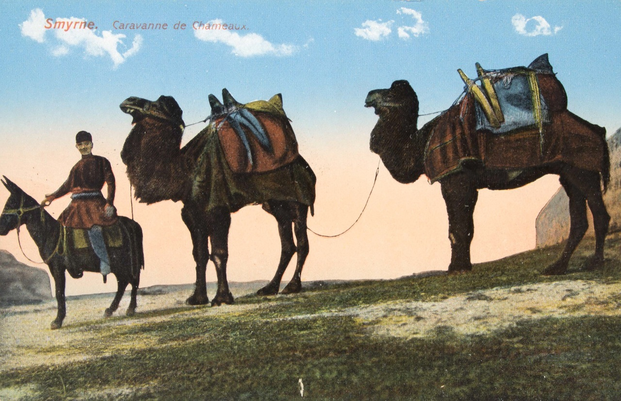 """No. 17 - Desert Transport, Iraq""  Turkey, Early 20th century  Color photomechanical printed postcard Publisher: A & K Naman, Baghdad  Myron Bement Smith Collection  Freer Gallery of Art and the Arthur M. Sackler Gallery Archives, FSA A.04  pc180"