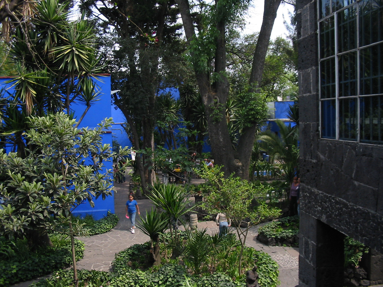 The garden today at the Museo Frida Kahlo, housed in the artist's former home, La Casa Azul (photo by Thelmadatter/Wikipedia)