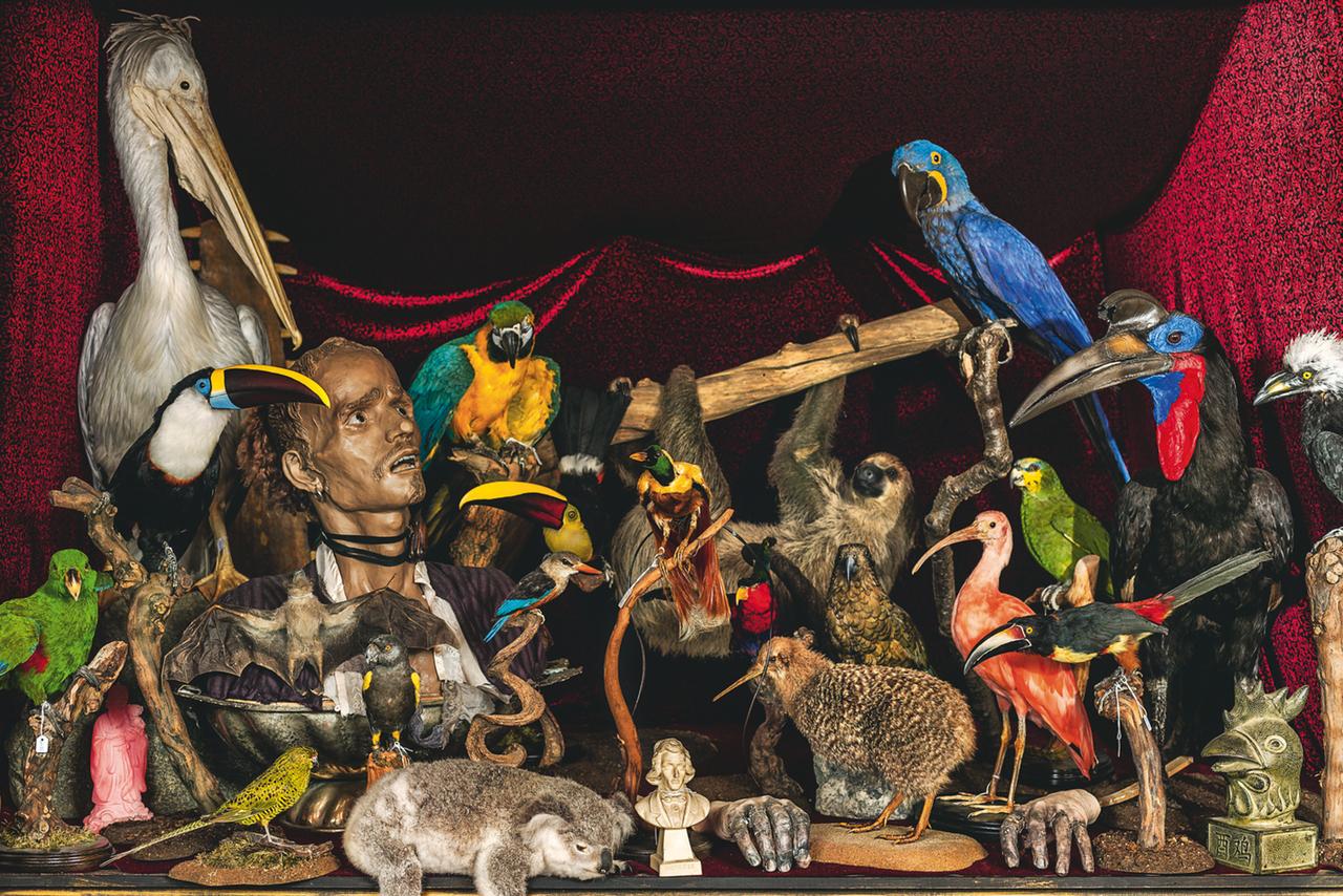 Sculpture by Eleanor Crook & rare birds (photograph by Oskar Proctor)
