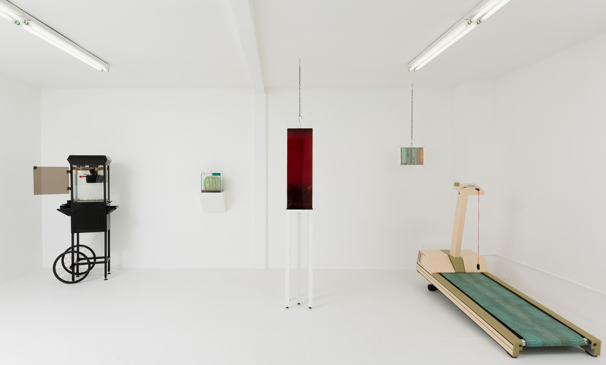 Max Hooper Schneider: The Pound, installation view (via Jennys.us)