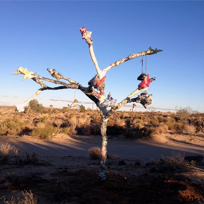 Christian Tedeschi's Tree (via Outpost Project's Instagram)