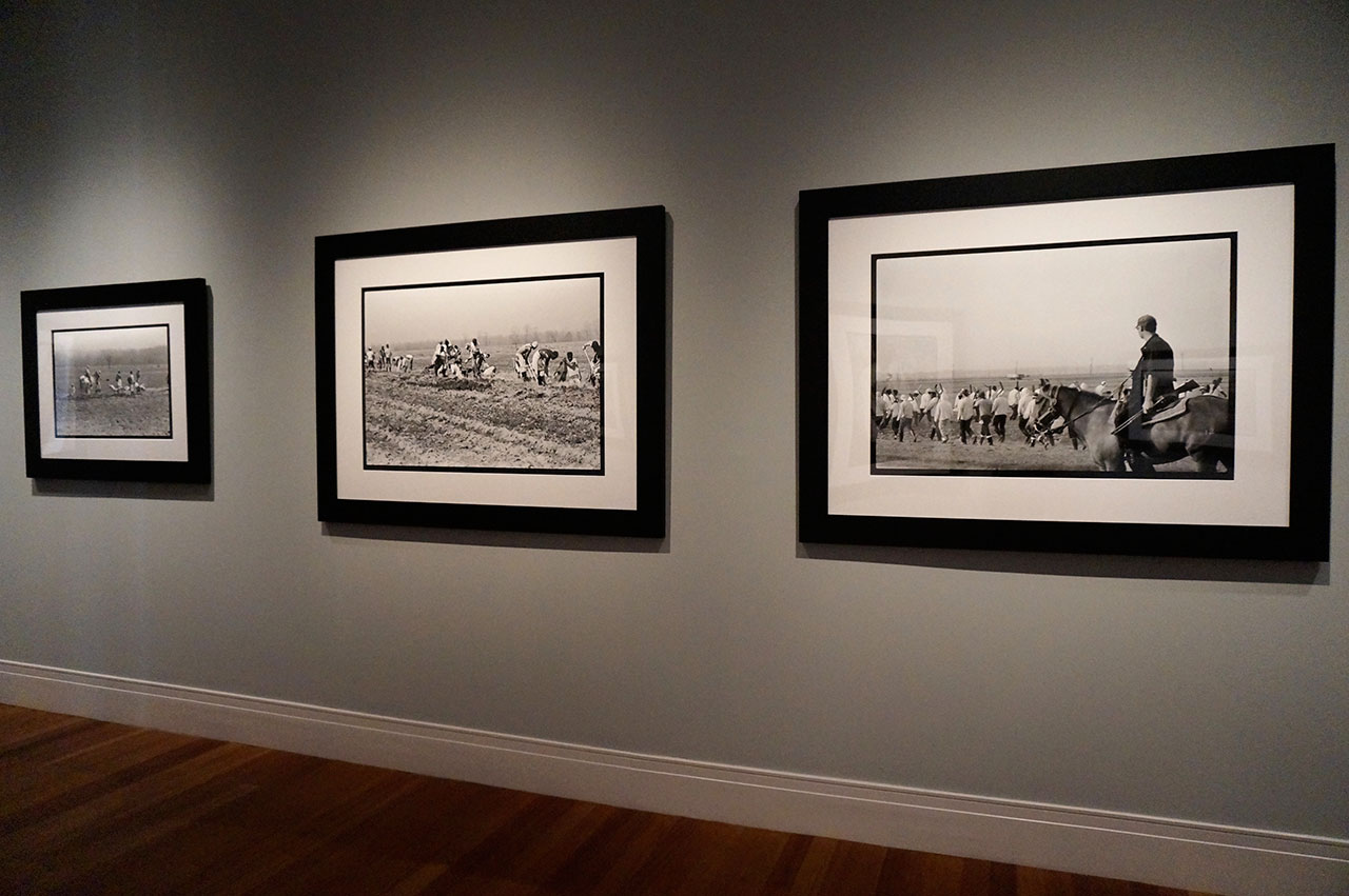 Installation view, 'Keith Calhoun & Chandra McCormick: Slavery, The Prison Industrial Complex' at the Ogden Museum (click to enlarge)