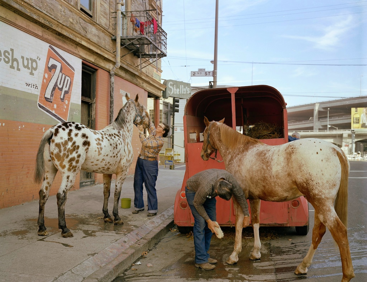 """Janet Delaney, """"Skip Wheeler and his wife groom their horses after Veterans Day Parade, Folsom at 2nd Street"""""""