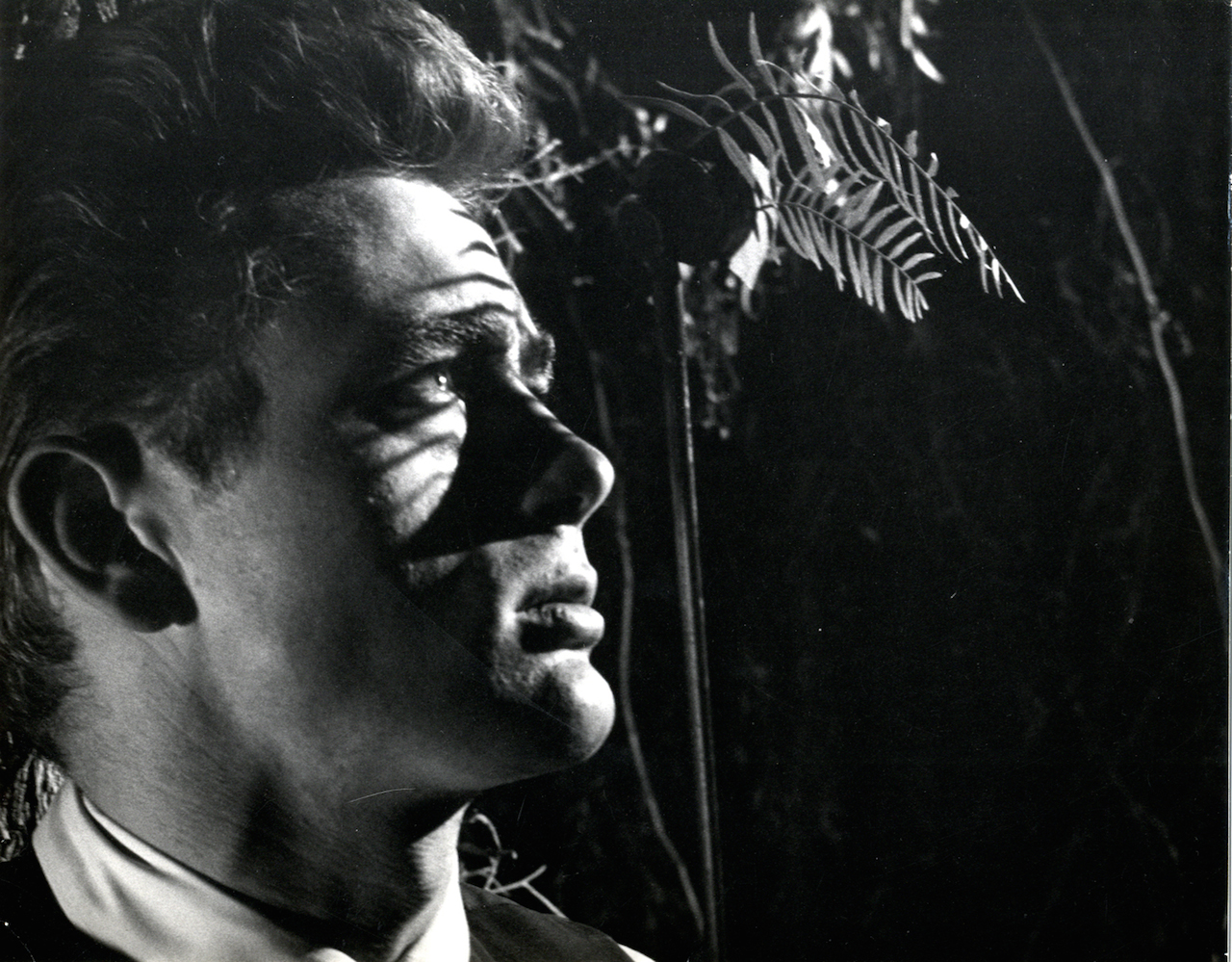 James Dean. Still from director Elia Kazan's East of Eden. The Museum of Modern Art Film Stills Collection. All images courtesy of the Museum of Modern Art.
