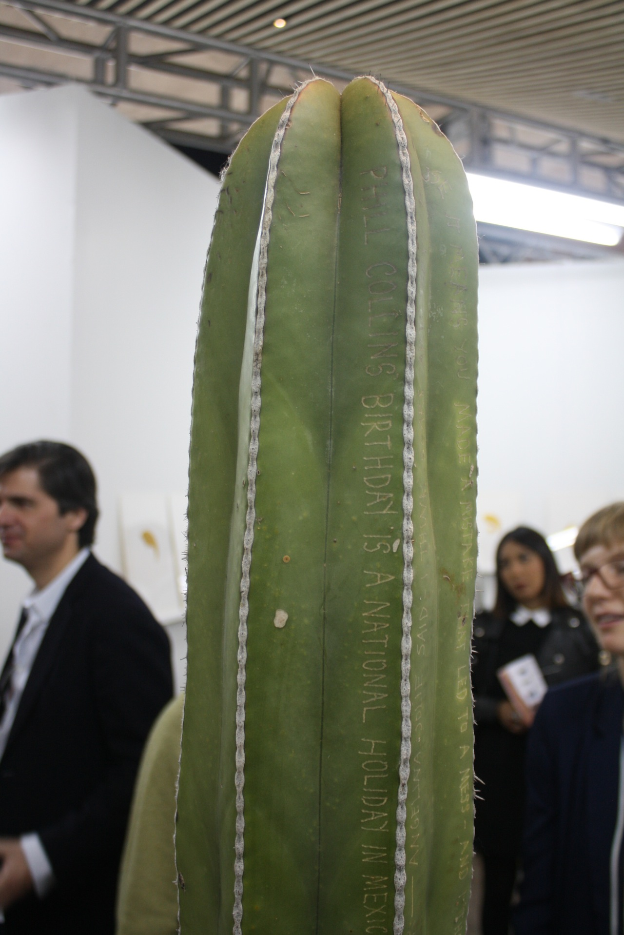 Tattooed cactus by There There at Regina Re's booth