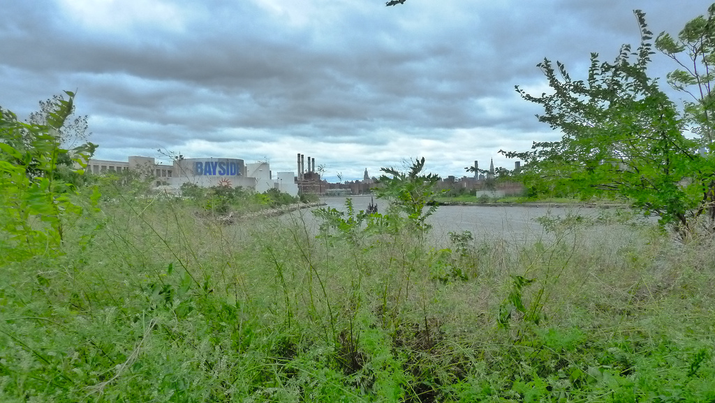 The undeveloped region of Bushwick Inlet (photograph by Inga, via Flickr)