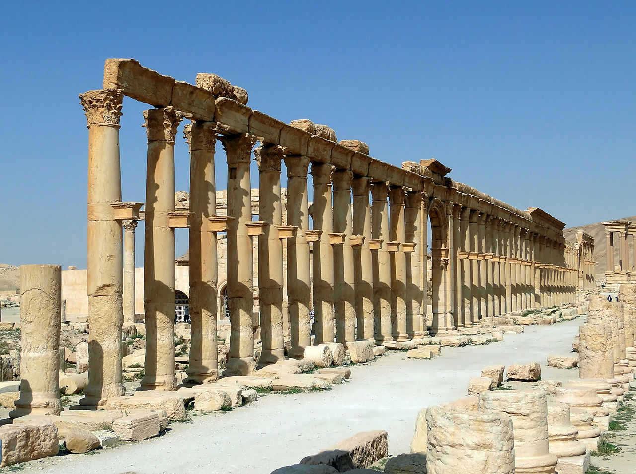 The Decumanus Maximus at the ancient site of Palmyra in the Syrian desert, which has been extensively looted. (photo by Bernard Gagnon via Wikimedia Commons)