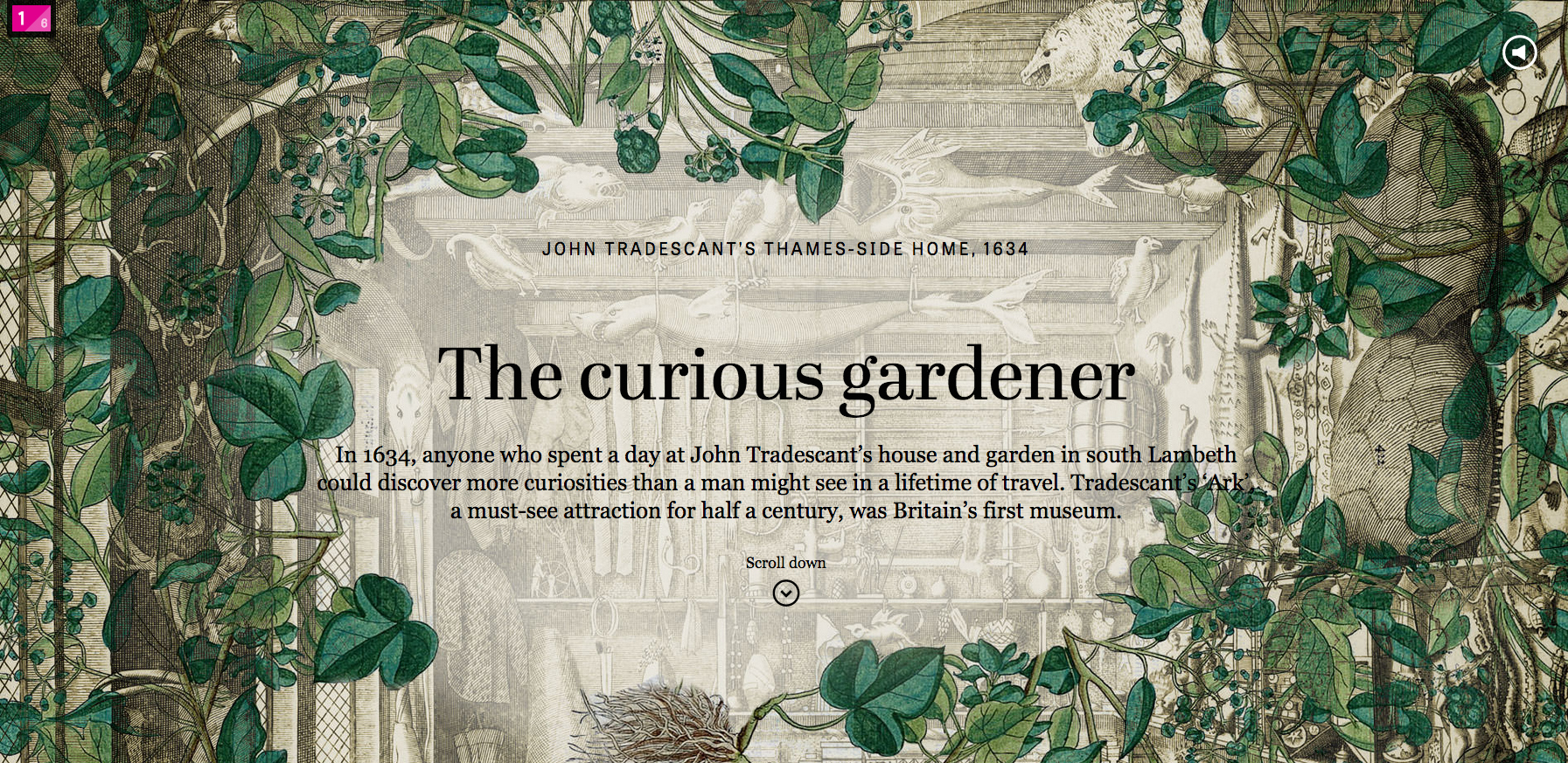 """Chapter on """"The Curious Gardener"""" from """"The Collectors (screenshot by the author for Hyperallergic)"""