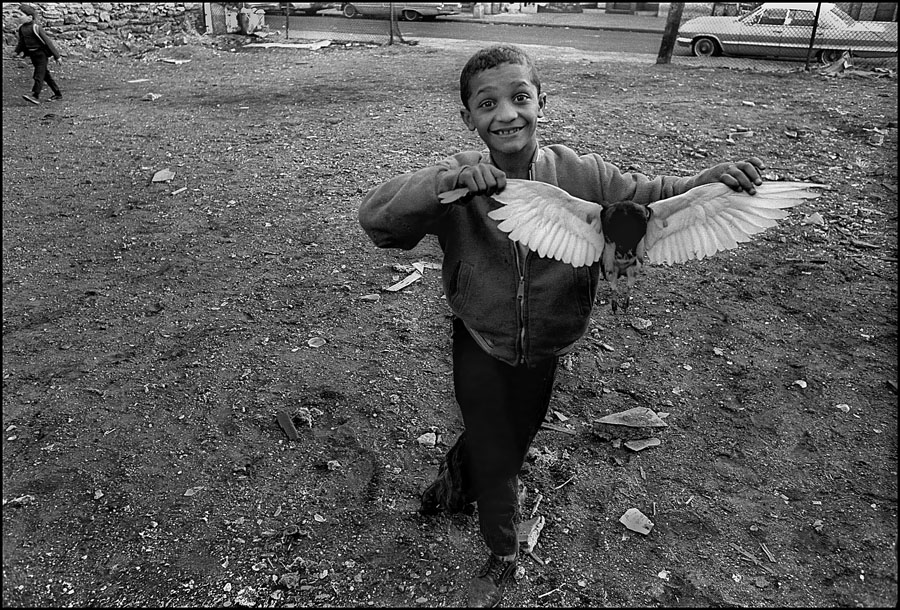 """George Malave (En Foco), """"Boy with Dead Bird"""" (1969, printed 2011), from the series 'Varet Street'"""