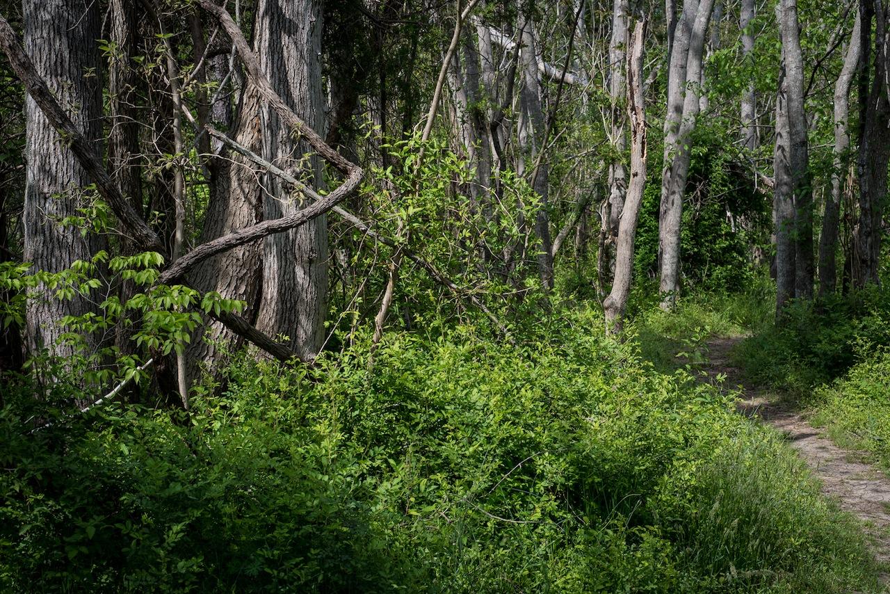 Death Site of John Wilkes Booth, near Port Royal, VA, 2013