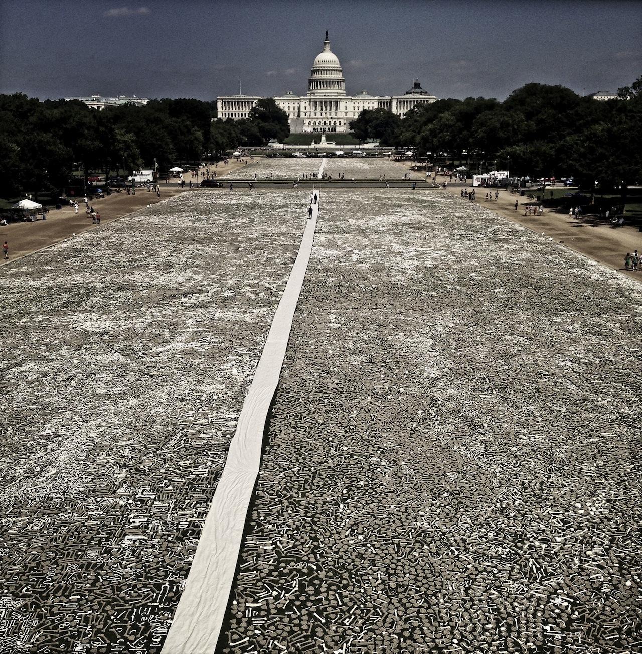 The installation of one million bones on the National Mall (Photography by Teru Kuwayama)