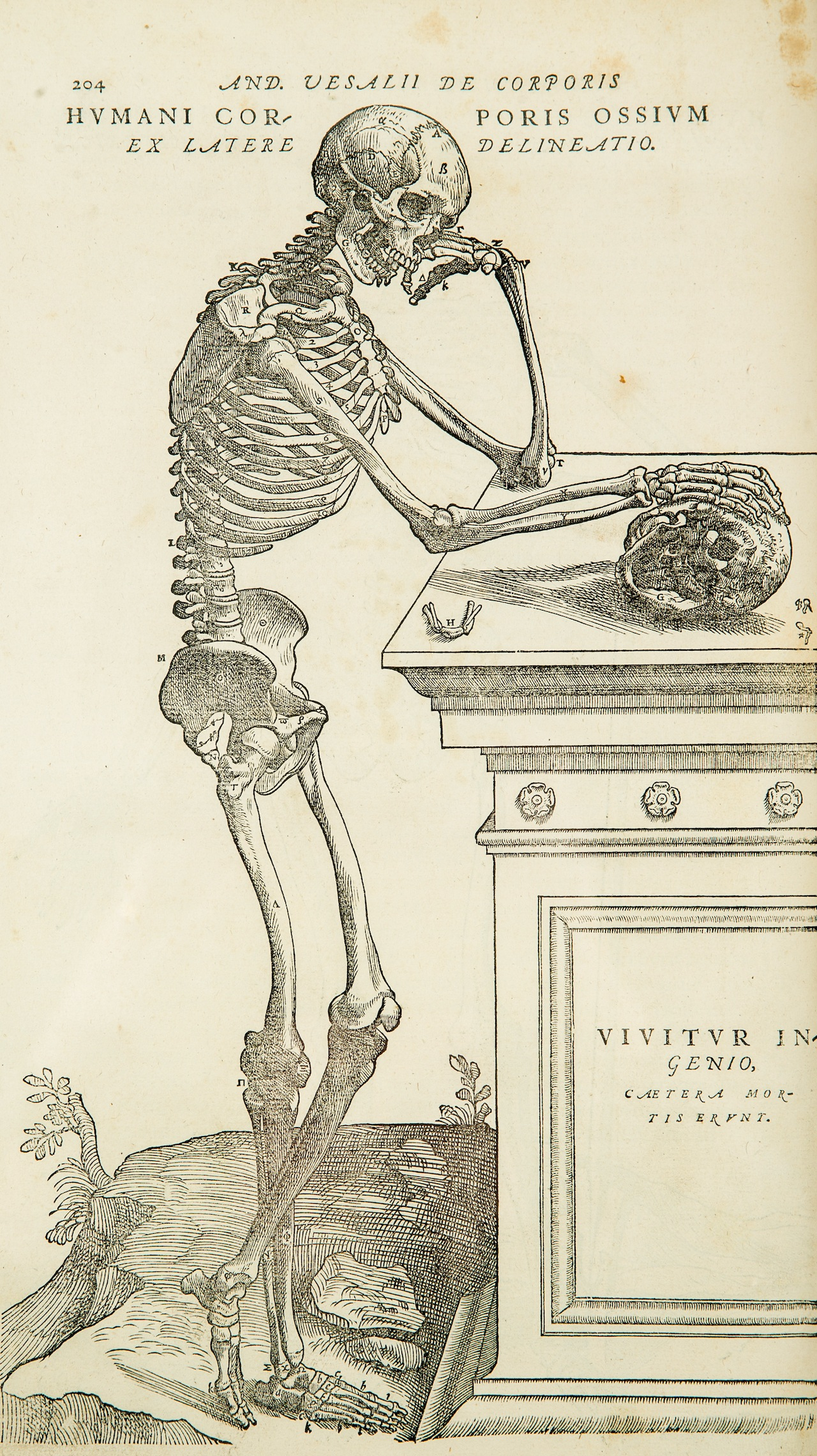 An Artistic History of Death