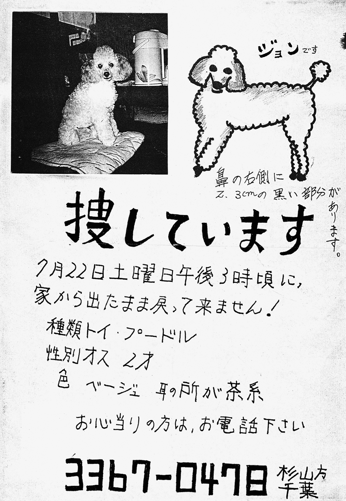 A Heartbreaking Archive of Missing Pet Posters