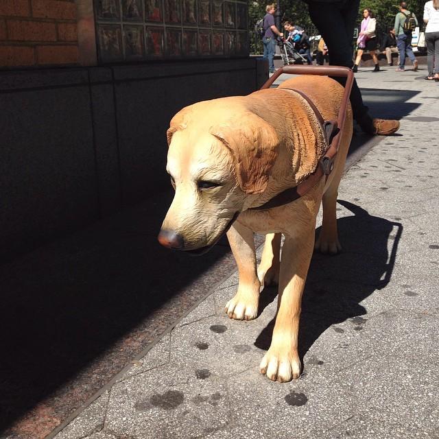 """Tony Matelli, """"Stray Dog"""" (2014) (photo by nadinejohnsonpr/Instagram)"""