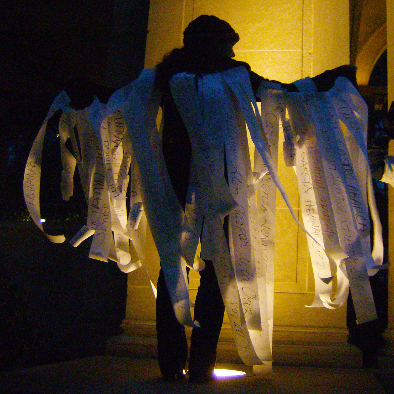 Tribute to the Disappeared_Andrea Arroyo_43 Wings