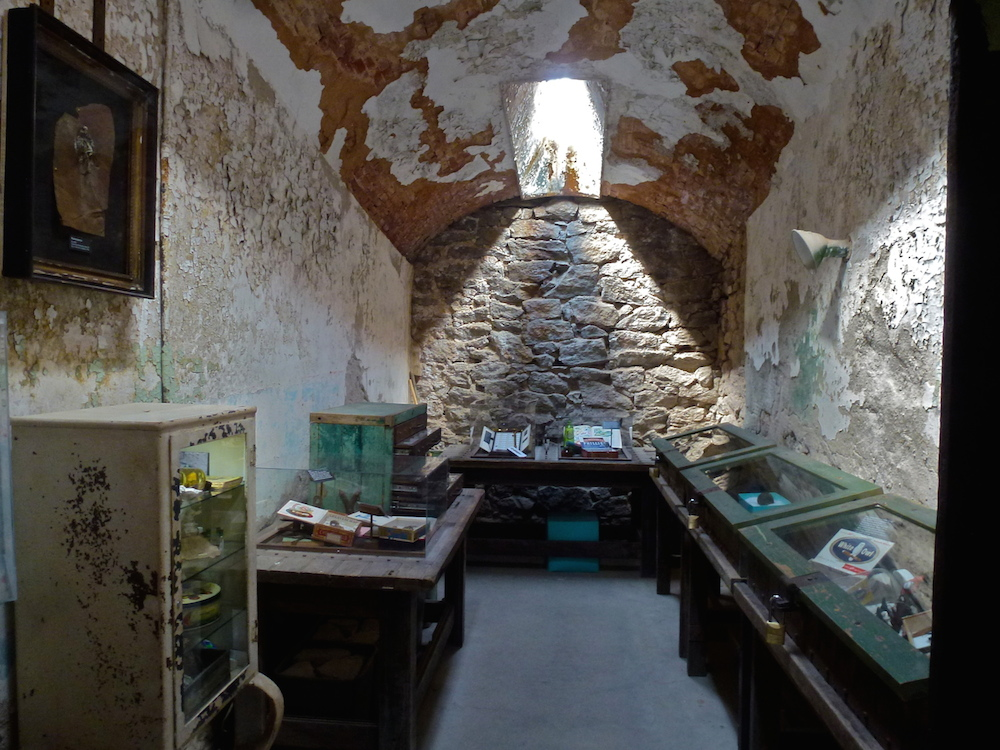 The 'Specimen' exhibition in Cell 25, Cell Block 9, Eastern State Penitentiary (photo by Greg Cowper)