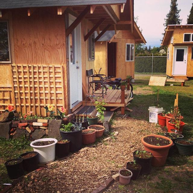 Houses in Eugene, Oregon's Opportunity Village (Image via Facebook)