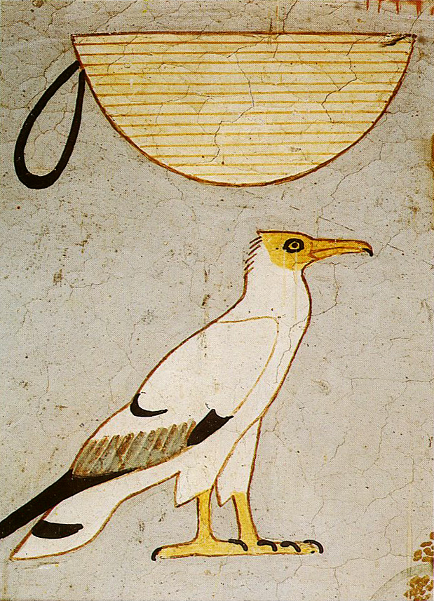Hieroglyphic signs, painting on plaster, Egyptian Museumof Cairo, CG 1744, h. cm 27 circa (foto © F. Tiradritti)