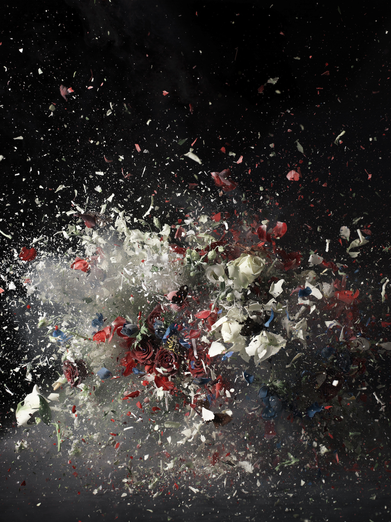 Blow Up, Untitled 1, 2007, Ori Gersht © Ori Gersht, Private Collection, courtesy of Mummery+Schnelle