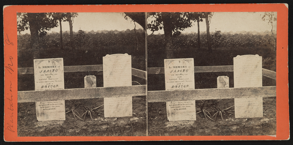 Plantation no. 8 Portion of Negro burying ground - Osborn & Durbec