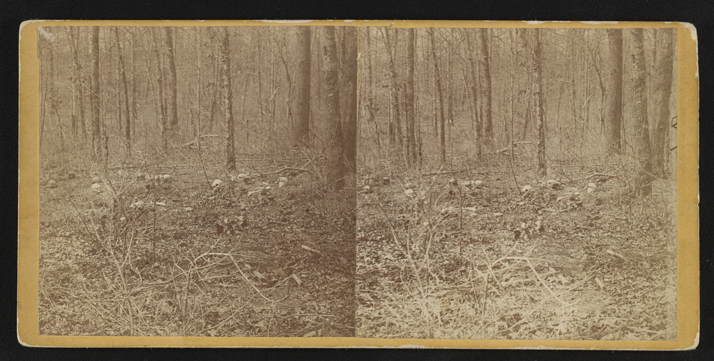 Remains of unburied soldiers, one-half mile S.W. of Chancellorsville House. View taken April 1865 - Brown, G. O.