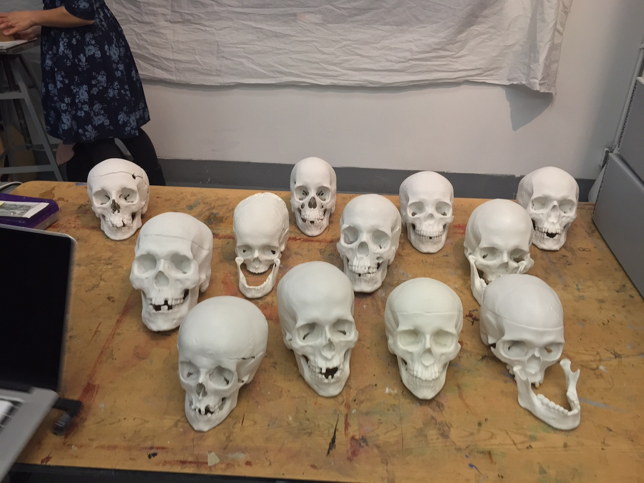 Replicas of the unidentified skulls