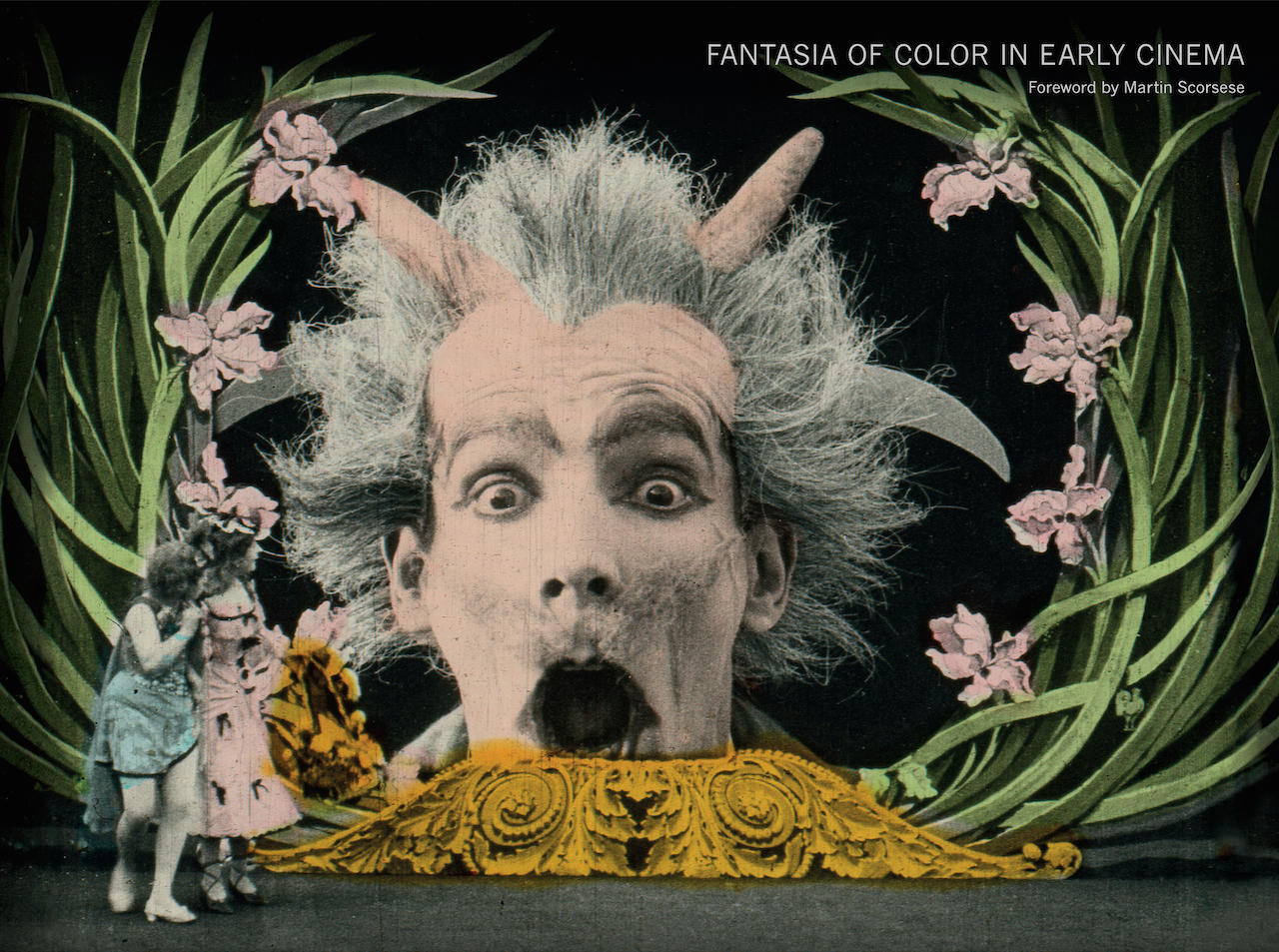 Cover of 'Fantasia of Color in Early Cinema'