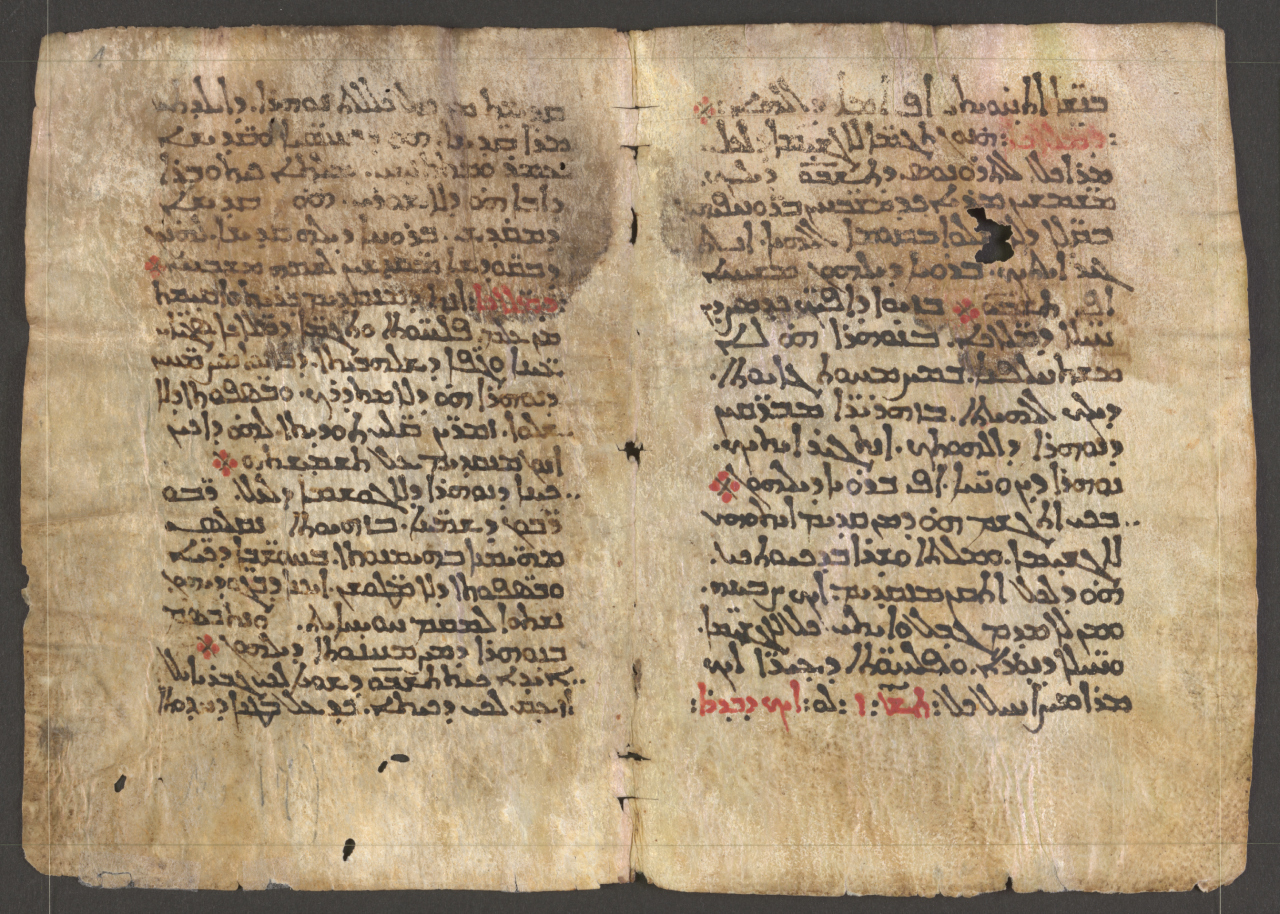 Pages from the Syriac Galen Palimpsest (via digitalgalen.net)