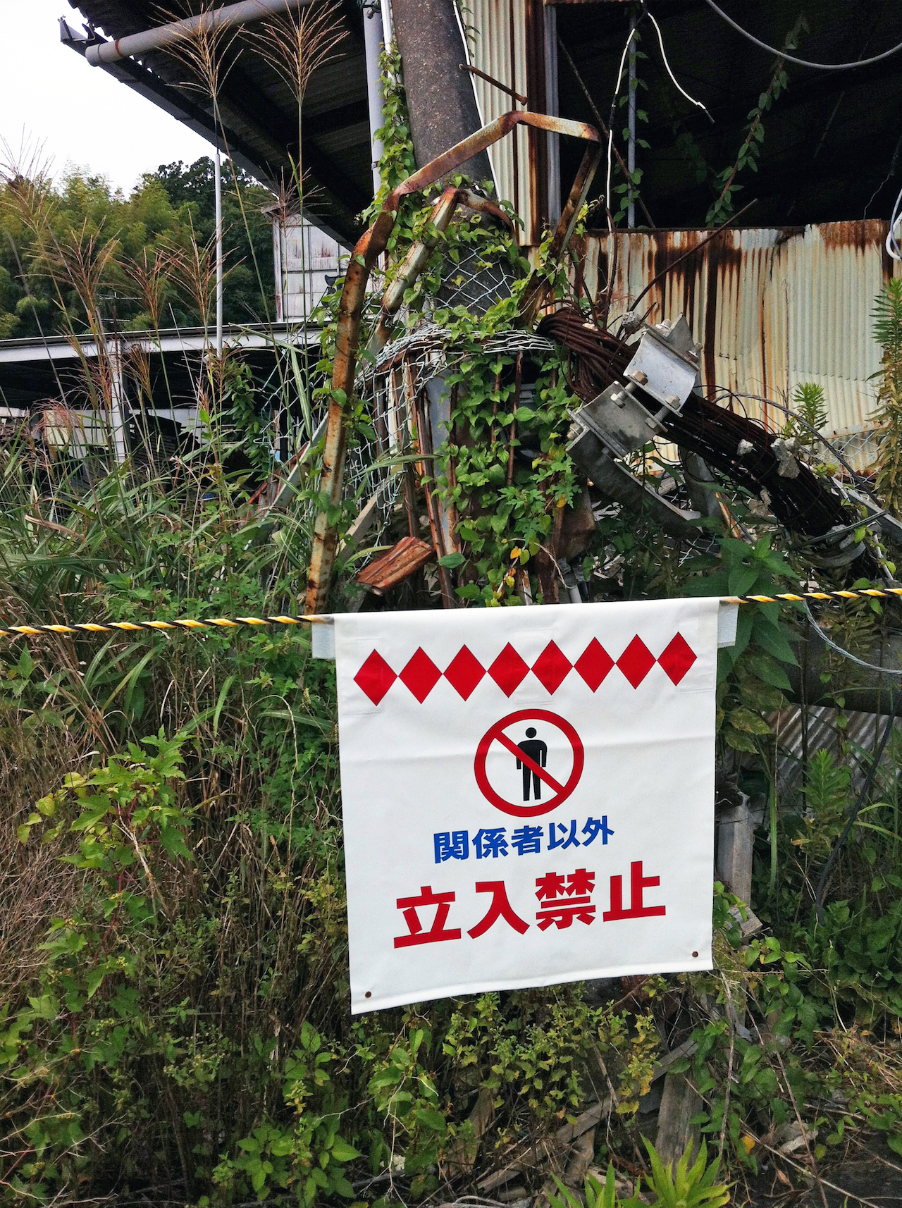 View of the Fukushima Exclusion Zone