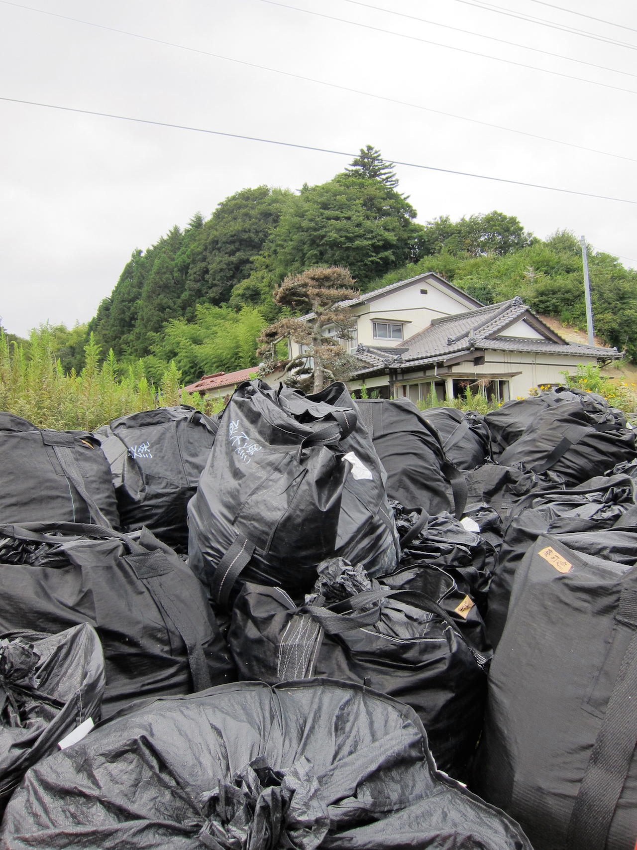 Bags of nuclear waste in the Fukushima Exclusion Zone
