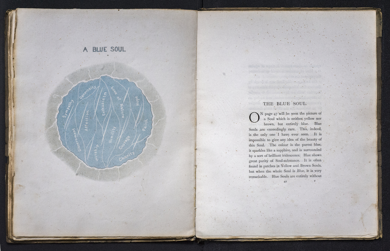 Object Lessons: The Visualisation of Nineteenth-Century Life Sciences