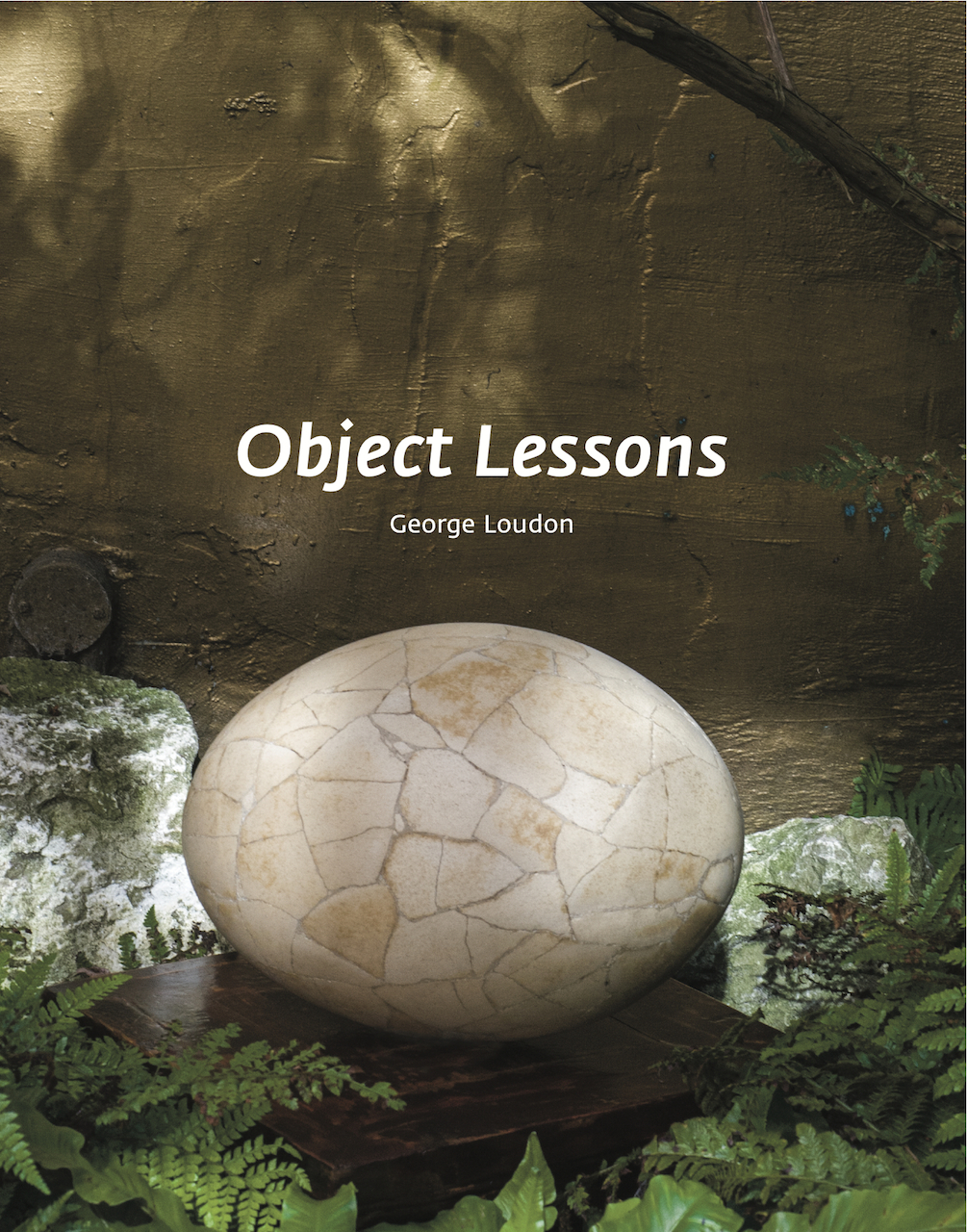 Cover of 'Object Lessons: The Visualisation of Nineteenth-Century Life Sciences' (click to enlarge)