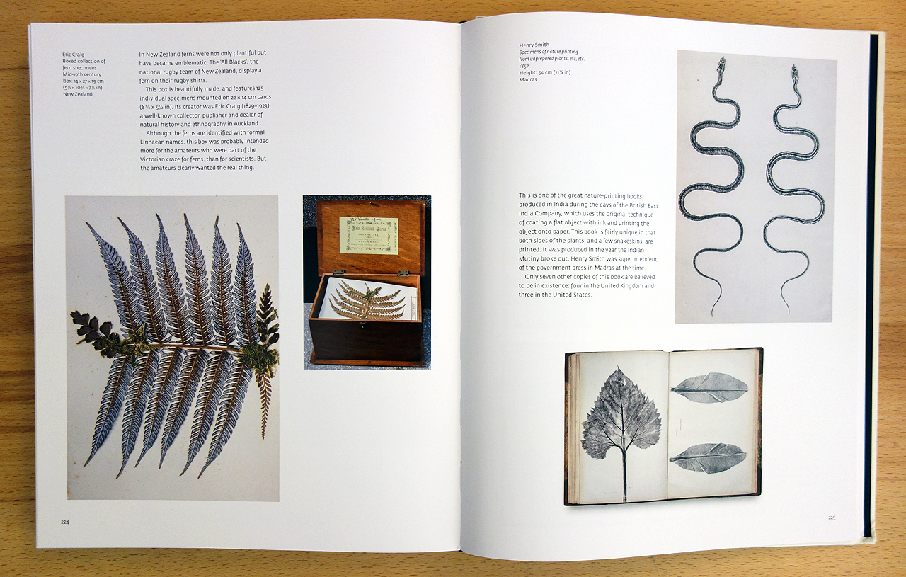 Pages from 'Object Lessons' (photo of the book for Hyperallergic)