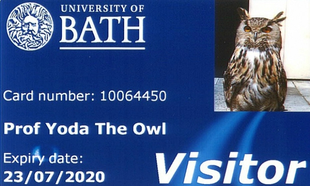 Library card given this month to Yoda the Owl from the University of Bath, in thanks for keeping the intrusive seagull population at bay (via University of Bath)