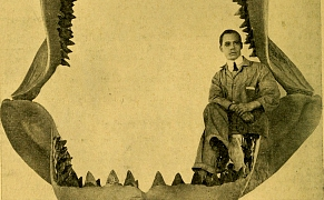 Post image for 35 Questions for a Would-Be Natural History Curator, in 1910