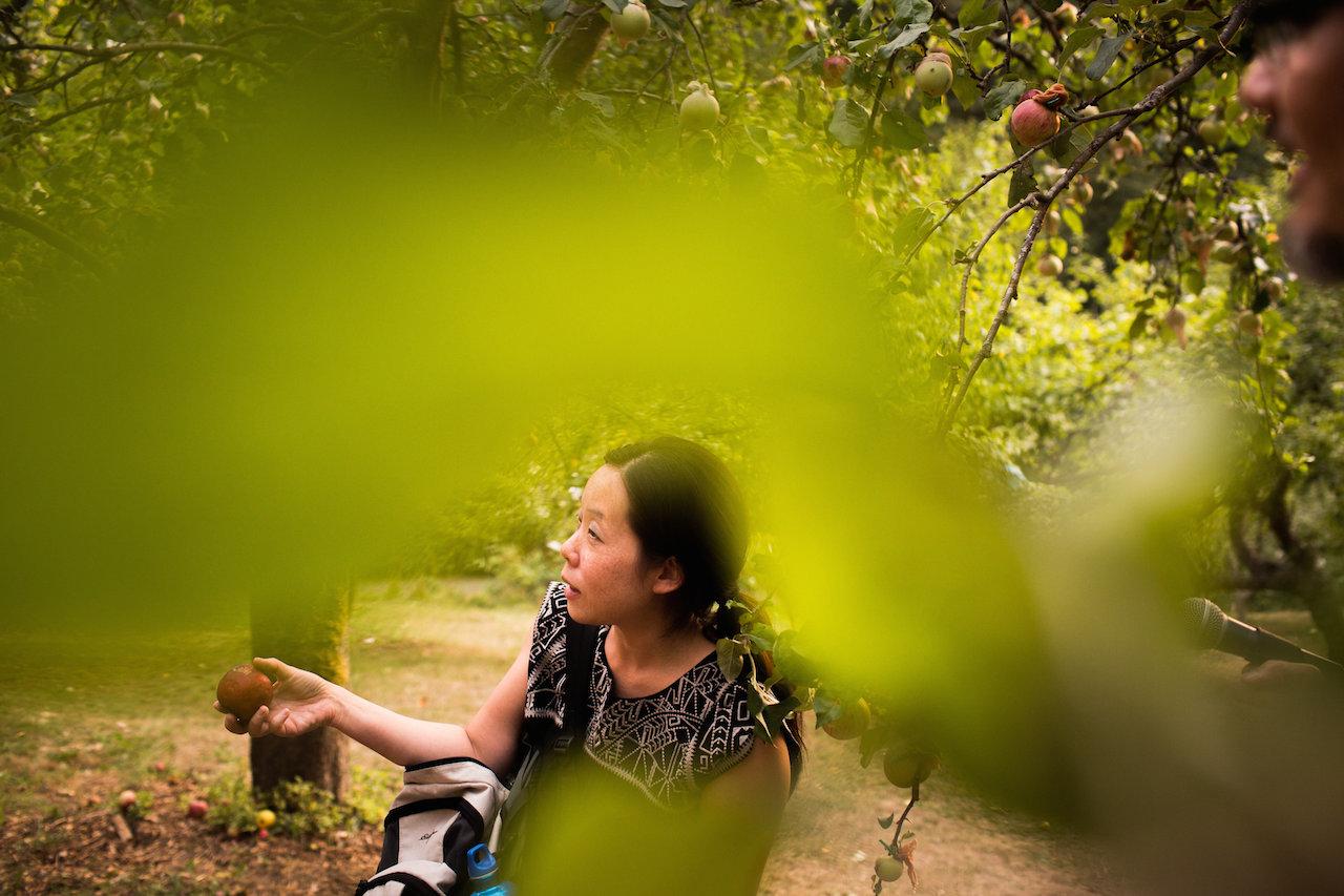 """Heirloom"" by Shin Yu Pai in Piper's Orchard, Carkeek Park, Seattle (photo by Katy Tuttle)"