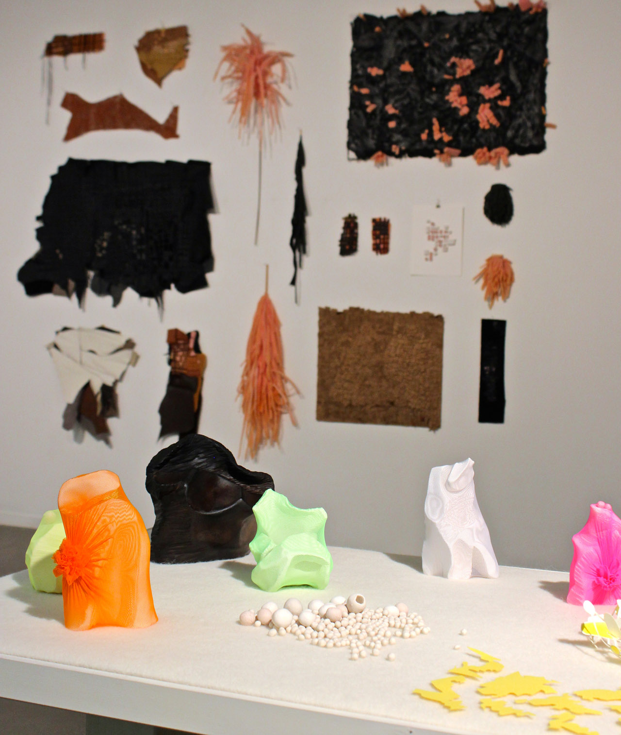 Works by Lynn Bennett-Carpenter in the foreground with Carrie Dickason's wall installation in the background