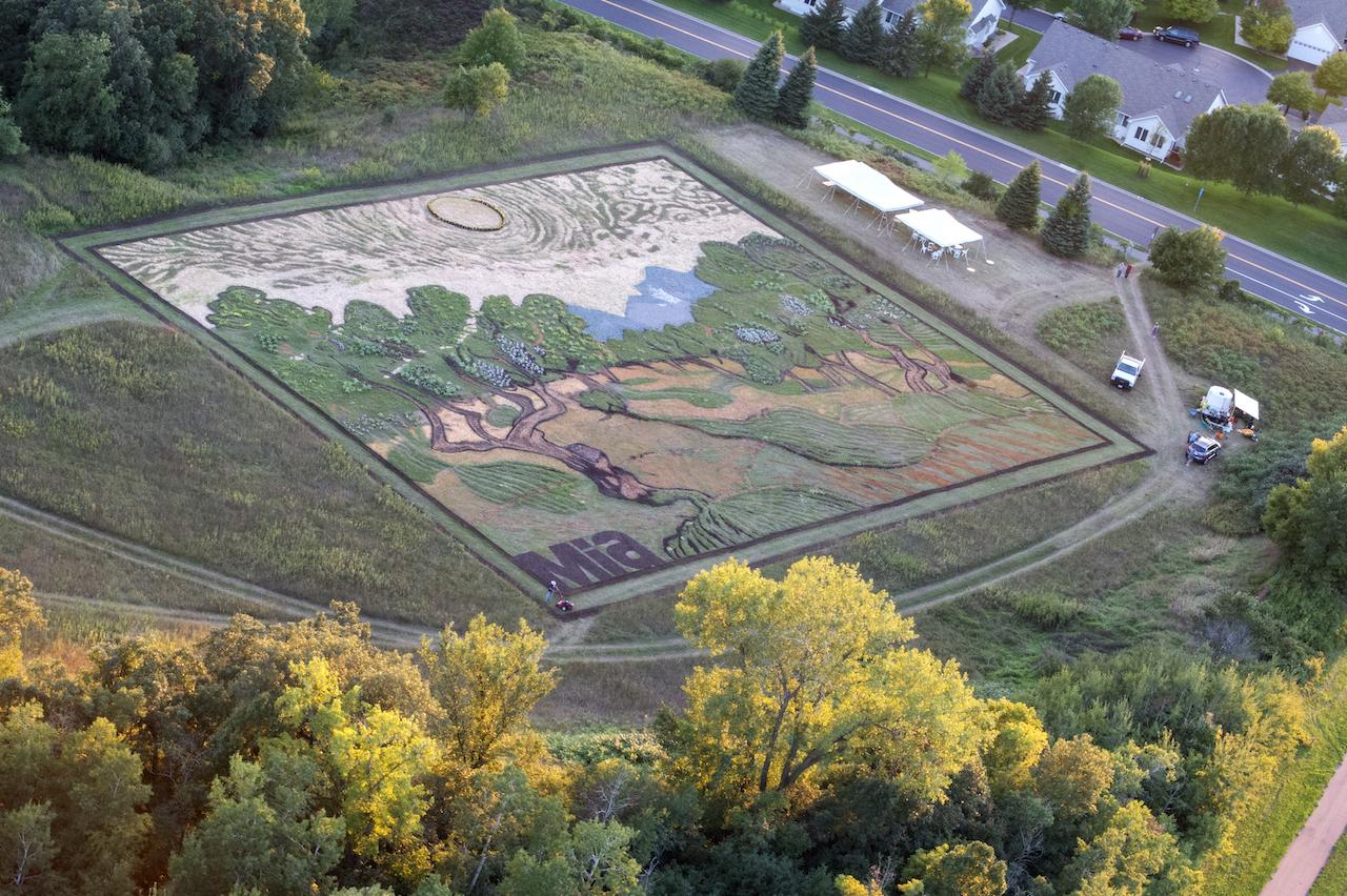 Stan Herd's crop art from above