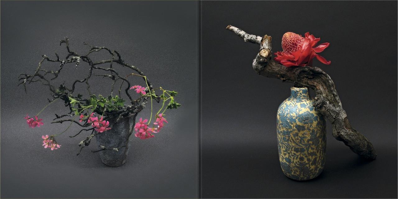 flora art 8