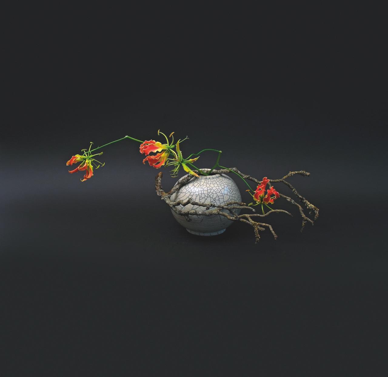 flora art5