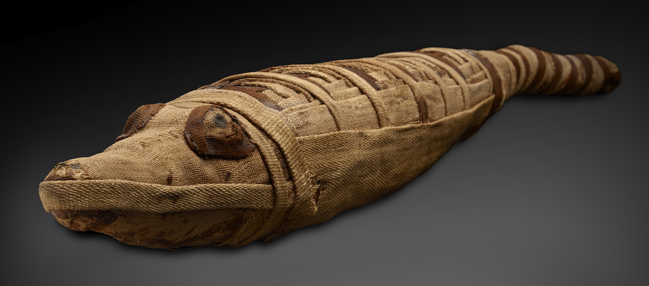 Comparing The Afterlives Of Peruvian And Egyptian Mummies