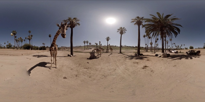 A 360° view of The San Diego Zoo's Safari park